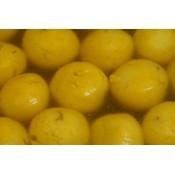 Mango rasgolla (1)