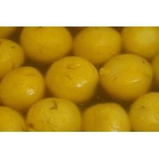 Mango rasgolla